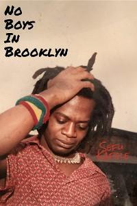 Cover No Boys In Brooklyn