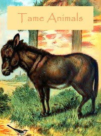 Cover Tame Animals