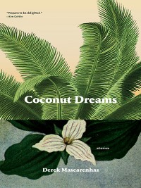 Cover Coconut Dreams
