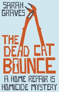 Cover Dead Cat Bounce