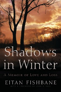 Cover Shadows in Winter