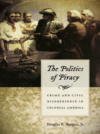 Cover The Politics of Piracy