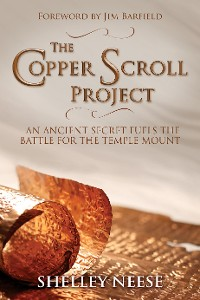 Cover The Copper Scroll Project
