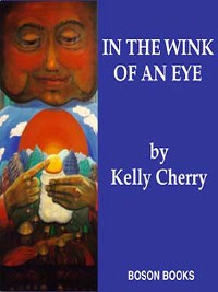 Cover In the Wink of an Eye