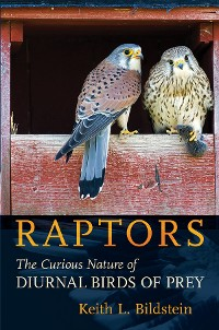 Cover Raptors