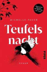 Cover Teufelsnacht