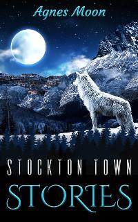 Cover Stockton Town Stories