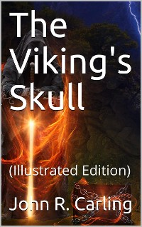 Cover The Viking's Skull