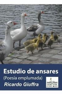 Cover Estudio de Ansares
