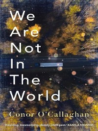 Cover We Are Not in the World