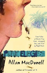 Cover Punk Elegies