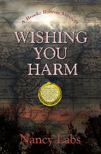 Cover Wishing You Harm
