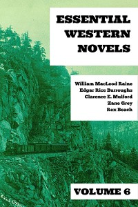 Cover Essential Western Novels - Volume 6