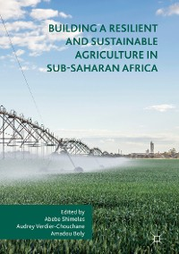 Cover Building a Resilient and Sustainable Agriculture in Sub-Saharan Africa