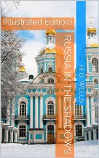 Cover Russia in the Shadows