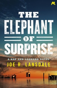 Cover Elephant of Surprise
