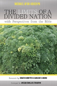 Cover The Limits of a Divided Nation with Perspectives from the Bible