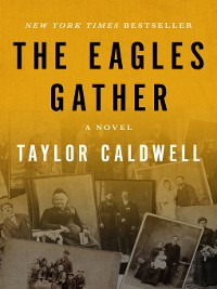 Cover The Eagles Gather