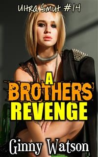 Cover A Brothers Revenge
