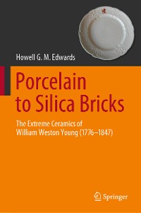 Cover Porcelain to Silica Bricks