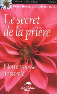 Cover Le secret de la priere 6