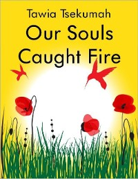 Cover Our Souls Caught Fire