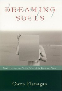Cover Dreaming Souls