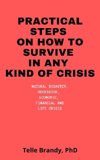 Cover Practical Steps On How To Survive In Any Kind Of Crisis