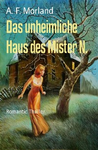 Cover Das unheimliche Haus des Mister N.
