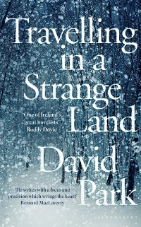 Cover Travelling in a Strange Land