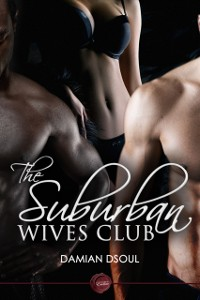 Cover Suburban Wives Club