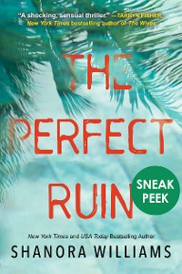 Cover The Perfect Ruin: Chapter Sampler