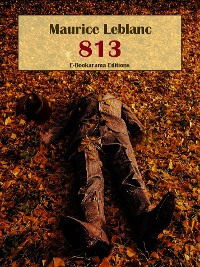 Cover 813