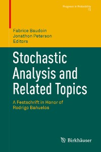 Cover Stochastic Analysis and Related Topics