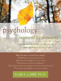 Cover Psychology Moment by Moment