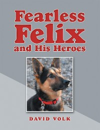 Cover Fearless Felix and His Heroes