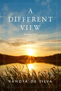 Cover A Different View in Poetry