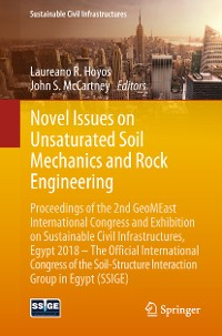 Cover Novel Issues on Unsaturated Soil Mechanics and Rock Engineering