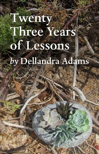 Cover Twenty Three Years of Lessons