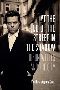 Cover At the End of the Street in the Shadow