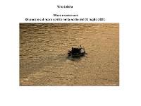 Cover Mare  mare  mare.  36 Poesie sul mare
