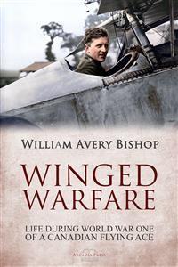 Cover Winged Warfare