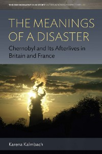 Cover The Meanings of a Disaster