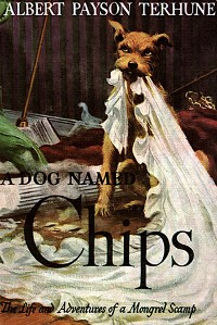 Cover A Dog Named Chips: The Life and Adventures of a Mongrel Scamp