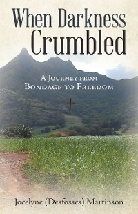 Cover When Darkness Crumbled