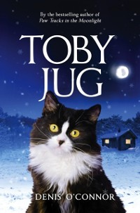Cover Toby Jug