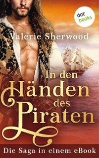 Cover In den Händen des Piraten