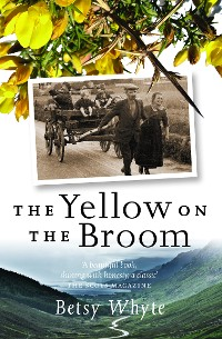 Cover Yellow on the Broom