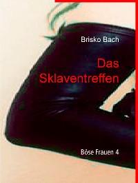 Cover Das Sklaventreffen