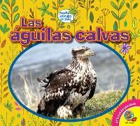 Cover Las águilas calvas